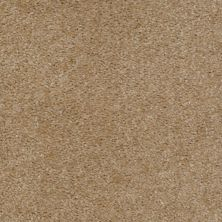 Shaw Floors Ever Again Nylon Eco Elegance Wheat Field 00160_PS501