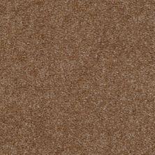 Shaw Floors Ever Again Nylon Eco Elegance Mink 00720_PS501