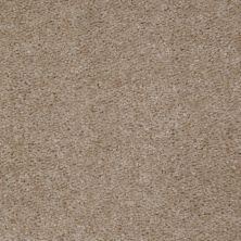 Shaw Floors Ever Again Nylon Eco Elegance Pebble Walk 00741_PS501