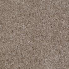 Shaw Floors Ever Again Nylon Eco Elegance Creek Side 00750_PS501