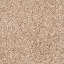 Shaw Floors Ever Again Nylon Eco Choice Driftwood 00100_PS503