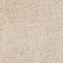 Shaw Floors Ever Again Nylon Eco Choice Sandstone 00102_PS503