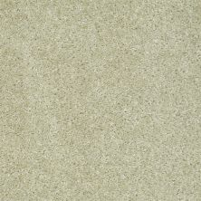 Shaw Floors Ever Again Nylon Eco Choice Stucco 00103_PS503