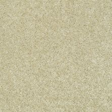 Shaw Floors Ever Again Nylon Eco Choice Alpaca 00105_PS503