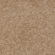 Shaw Floors Ever Again Nylon Eco Choice Pecan 00701_PS503