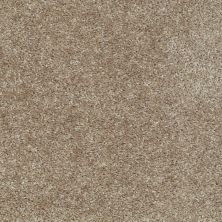 Shaw Floors Ever Again Nylon Eco Choice Buckskin 00702_PS503