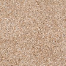 Shaw Floors Ever Again Nylon Eco Choice II Driftwood 00100_PS542