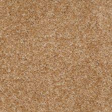Shaw Floors Ever Again Nylon Eco Choice II Cedar 00101_PS542