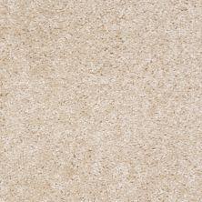 Shaw Floors Ever Again Nylon Eco Choice II Sandstone 00102_PS542