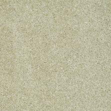 Shaw Floors Ever Again Nylon Eco Choice II Stucco 00103_PS542
