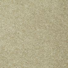 Shaw Floors Ever Again Nylon Eco Choice II Toast 00104_PS542