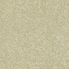 Shaw Floors Ever Again Nylon Eco Choice II Alpaca 00105_PS542