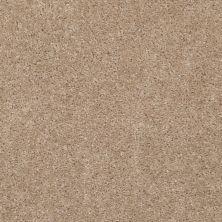 Shaw Floors Ever Again Nylon Eco Choice II Pearl Star 00111_PS542