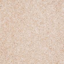 Shaw Floors Ever Again Nylon Eco Choice II Tailored Linen 00112_PS542
