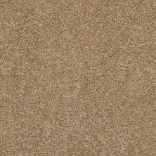 Shaw Floors Ever Again Nylon Eco Choice II Scalloped Shell 00113_PS542