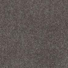 Shaw Floors Ever Again Nylon Eco Choice II Monterey Gray 00512_PS542