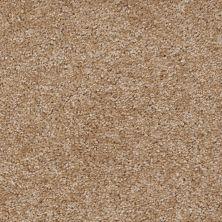 Shaw Floors Ever Again Nylon Eco Choice II Pecan 00701_PS542