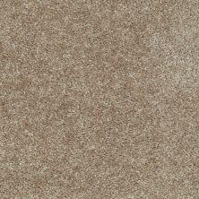 Shaw Floors Ever Again Nylon Eco Choice II Buckskin 00702_PS542