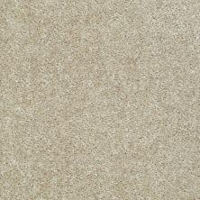 Shaw Floors Ever Again Nylon Eco Choice II Boardwalk 00710_PS542