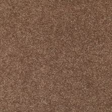 Shaw Floors Ever Again Nylon Eco Choice II Folk Stone 00712_PS542