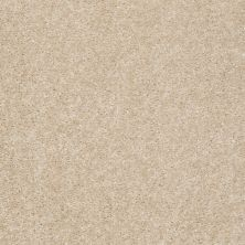 Shaw Floors Avalon Select Suede 00111_PS545
