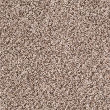 Shaw Floors Property Solutions Bedford Tweed Canvas 00120_PS592