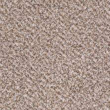 Shaw Floors Property Solutions Bedford Tweed Vapor 00121_PS592