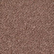 Shaw Floors Property Solutions Bedford Tweed Desert Dune 00720_PS592