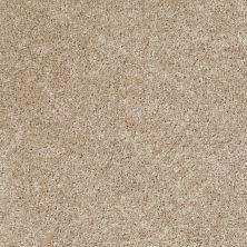 Shaw Floors Ever Again Nylon Eco Beauty Raw Silk 00103_PS605
