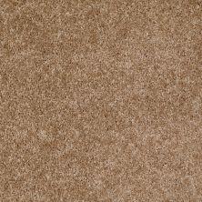Shaw Floors Ever Again Nylon Eco Beauty Hiking Trail 00700_PS605