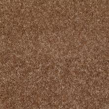 Shaw Floors Ever Again Nylon Eco Beauty Fawn 00702_PS605