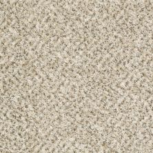 Shaw Floors Ever Again Nylon Eco Harvest White Wash 00100_PS610