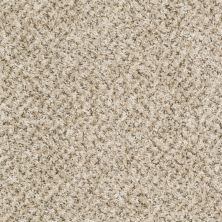 Shaw Floors Ever Again Nylon Eco Harvest Shell Island 00101_PS610