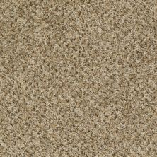 Shaw Floors Ever Again Nylon Eco Harvest Safari Sage 00300_PS610