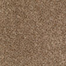 Shaw Floors Ever Again Nylon Eco Harvest Mocha Chip 00703_PS610