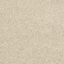 Shaw Floors Property Solutions Powerball Classic (s) Feather 00103_PS619