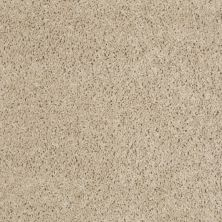 Shaw Floors Property Solutions Powerball Classic (s) Plaza Taupe 00700_PS619