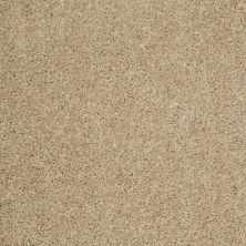 Shaw Floors Property Solutions Powerball Classic (s) Cobblestone 00702_PS619