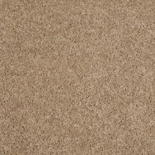 Shaw Floors Property Solutions Powerball Classic (s) Thatch 00721_PS619