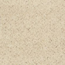 Shaw Floors Property Solutions Powerball Classic (b) Blondewood 00153_PS620