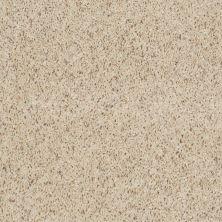 Shaw Floors Property Solutions Powerball Classic (b) Seashell 00160_PS620