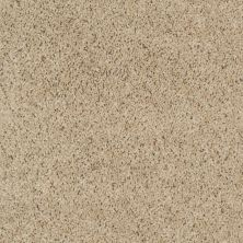 Shaw Floors Property Solutions Powerball Classic (b) Soft Leather 00163_PS620