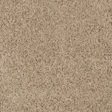 Shaw Floors Property Solutions Powerball Classic (b) Spice Nut 00770_PS620