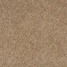 Shaw Floors Property Solutions Powerball Classic (b) Cliffhanger 00771_PS620