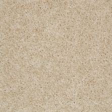Shaw Floors Fusion Sd Builder Ultimate Investment Ecru 00102_PS623