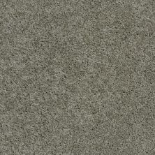 Shaw Floors Fusion Sd Builder Ultimate Investment Stone 00500_PS623
