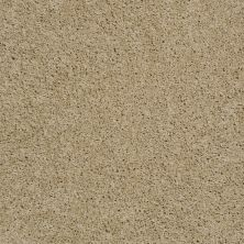 Shaw Floors Fusion Sd Builder Ultimate Investment Natural Wood 00700_PS623