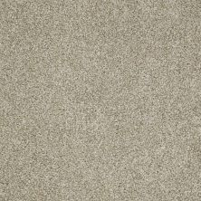 Shaw Floors Fusion Sd Builder Ultimate Foundation Sand Storm 00112_PS643