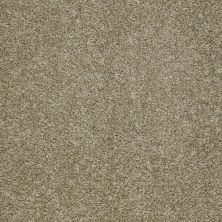 Shaw Floors Fusion Sd Builder Ultimate Foundation Barn Wood 00710_PS643