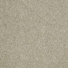 Shaw Floors Fusion Sd Builder Ultimate Statement Vintage Tan 00122_PS644